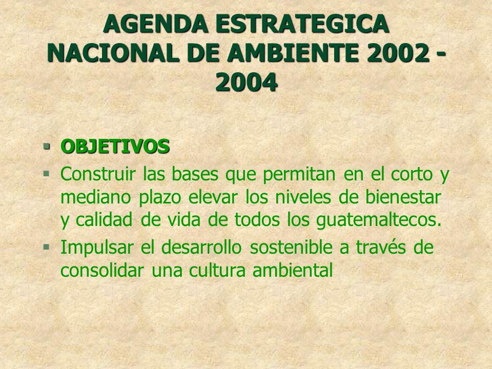 AGENDA ESTRATEGICA NACIONAL DE AMBIENTE 2002 - 2004