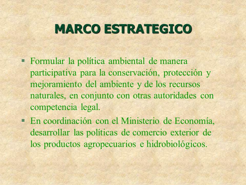 MARCO ESTRATEGICO
