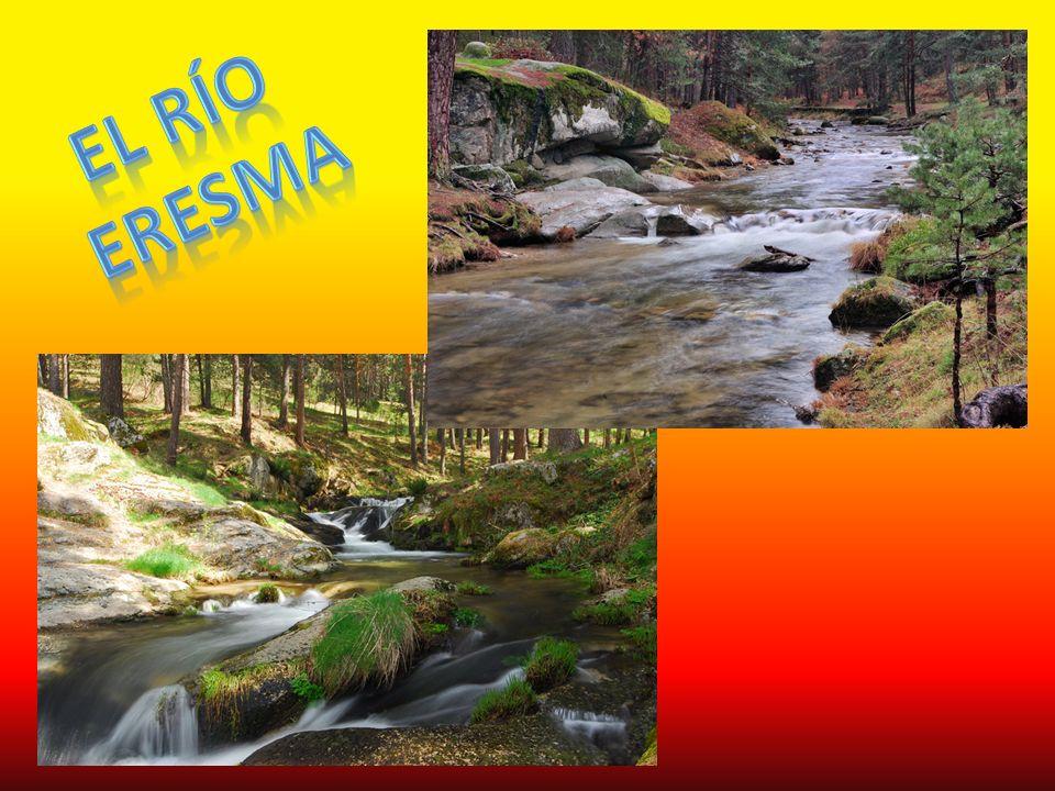 El Río Eresma