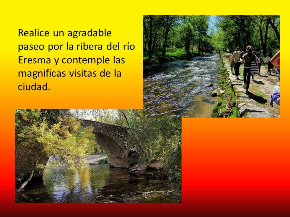 Realice un agradable paseo por la ribera del río Eresma y contemple las magnificas visitas de la ciudad.