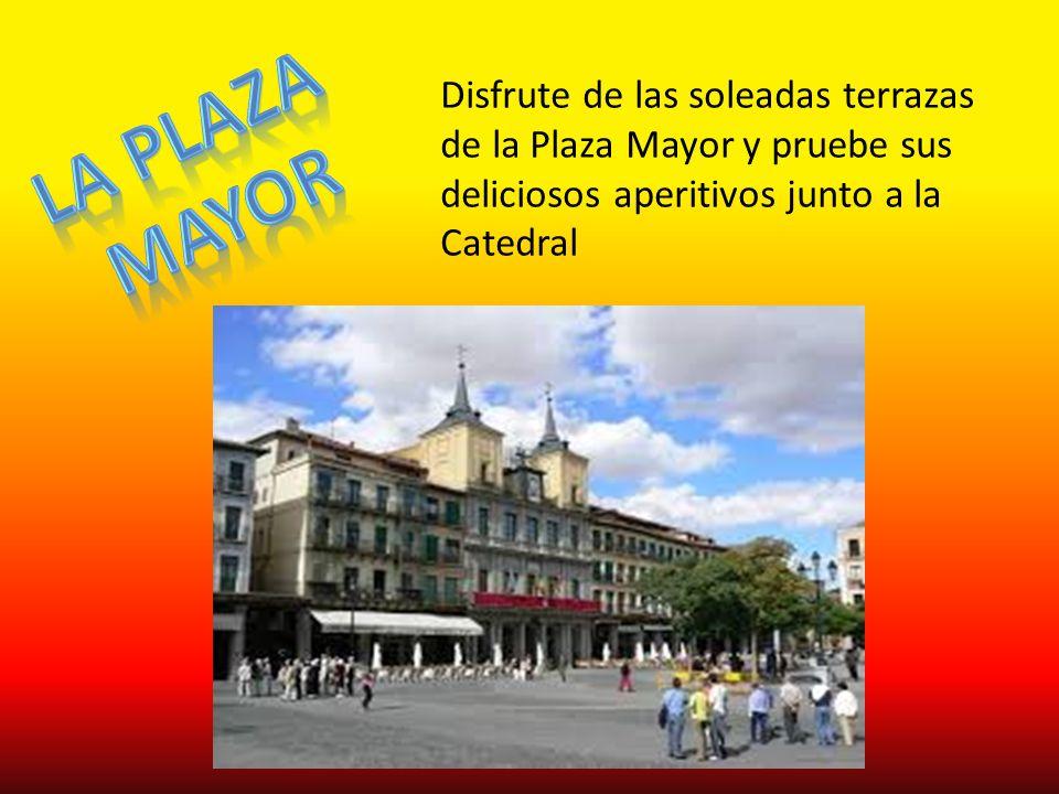Disfrute de las soleadas terrazas de la Plaza Mayor y pruebe sus deliciosos aperitivos junto a la Catedral