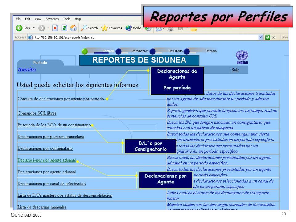 Reportes por Perfiles Declaraciones de Agente Por período