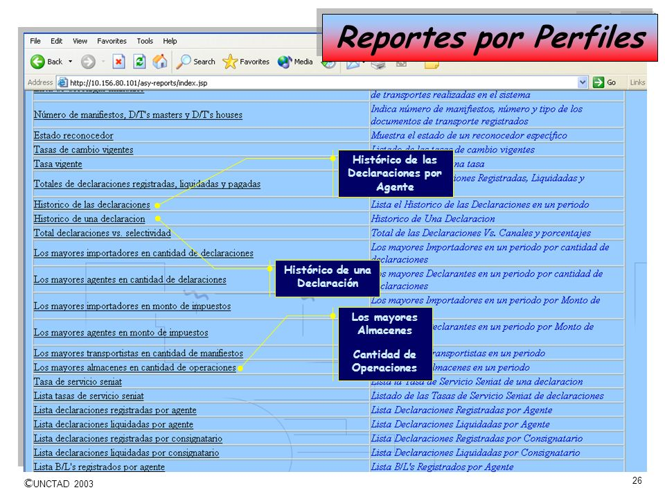 Reportes por Perfiles Histórico de las Declaraciones por Agente