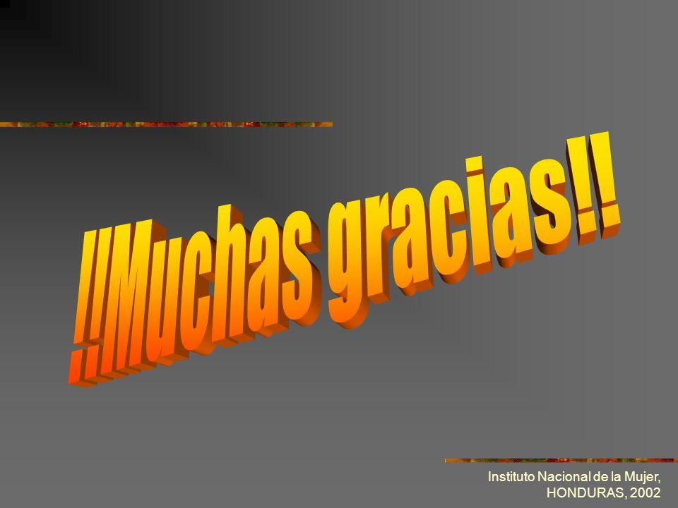 !!Muchas gracias!! Instituto Nacional de la Mujer, HONDURAS, 2002
