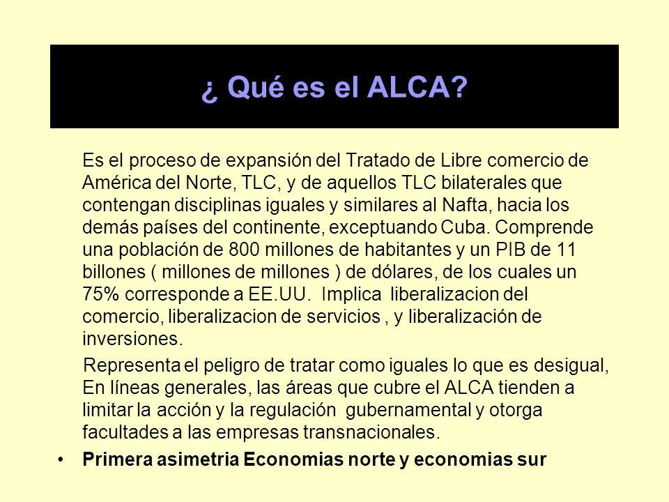 ¿ Qué es el ALCA