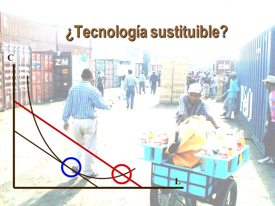 ¿Tecnología sustituible