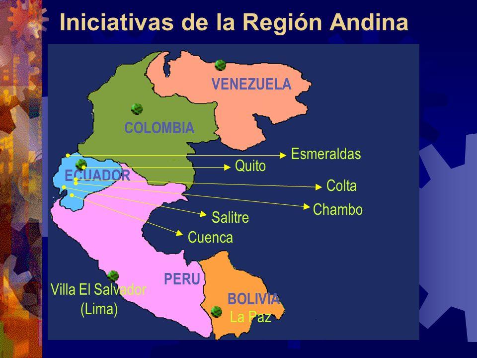 Iniciativas de la Región Andina