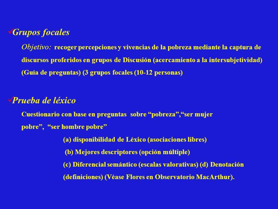 Grupos focales Prueba de léxico
