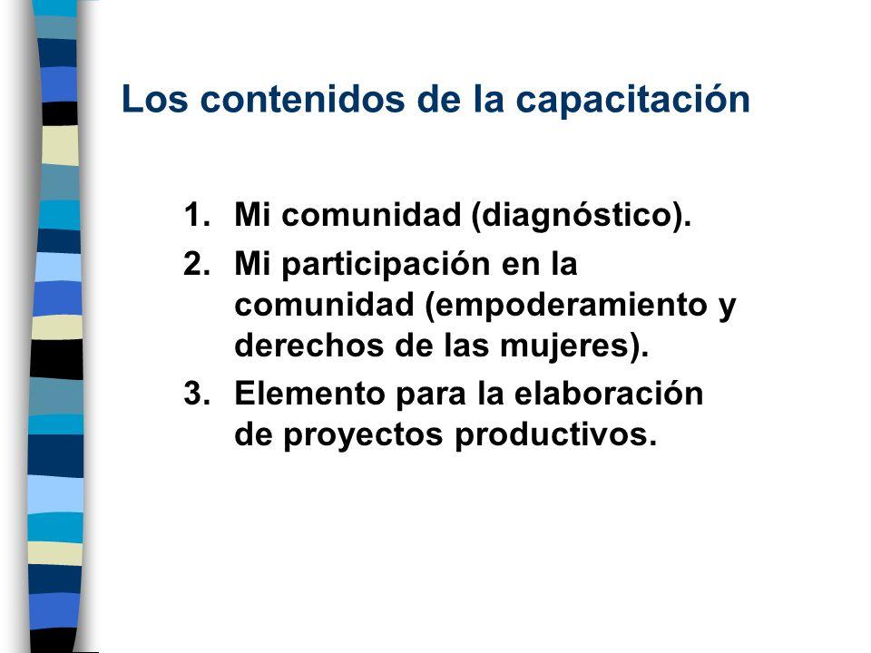 Los contenidos de la capacitación