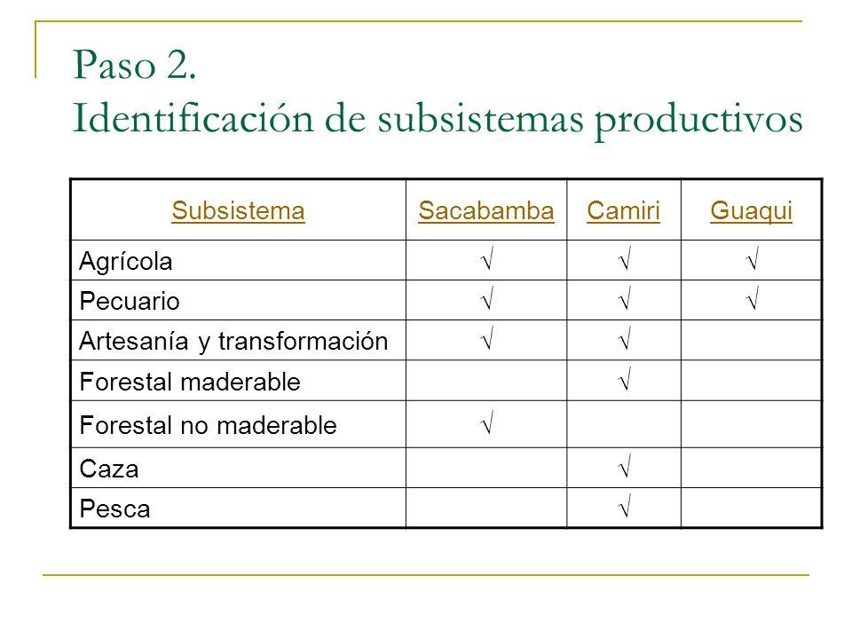 Paso 2. Identificación de subsistemas productivos