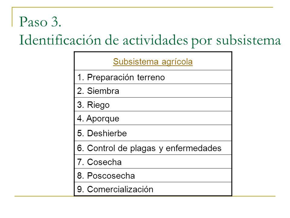 Paso 3. Identificación de actividades por subsistema