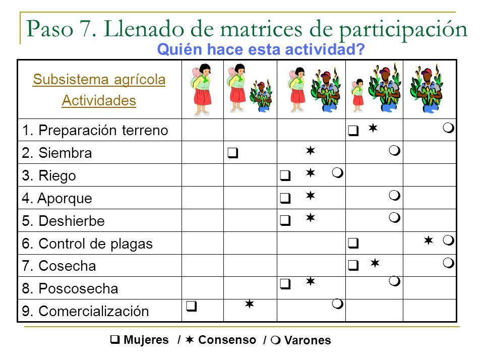 Paso 7. Llenado de matrices de participación
