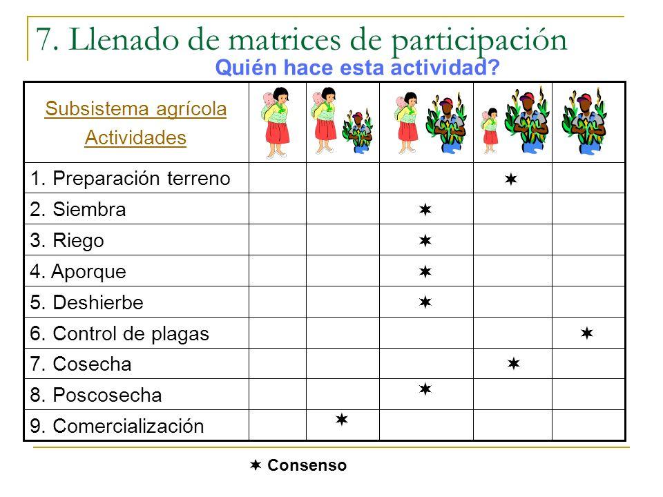 7. Llenado de matrices de participación