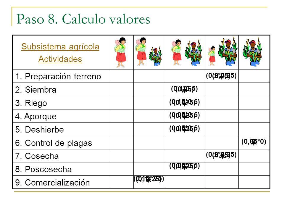 Paso 8. Calculo valores Subsistema agrícola Actividades