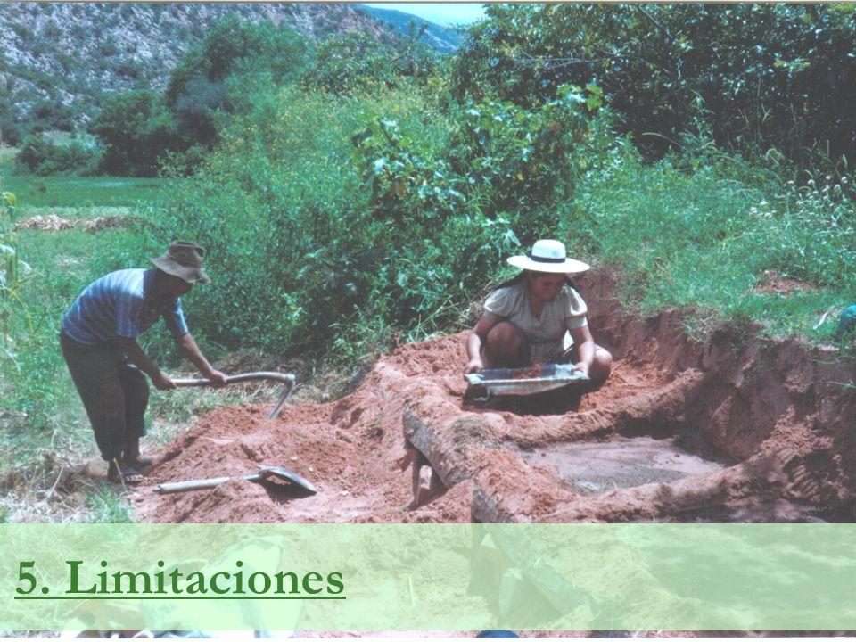 5. Limitaciones
