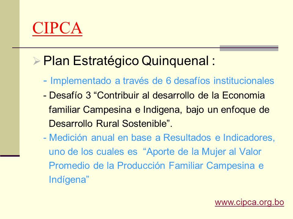 CIPCA Plan Estratégico Quinquenal :