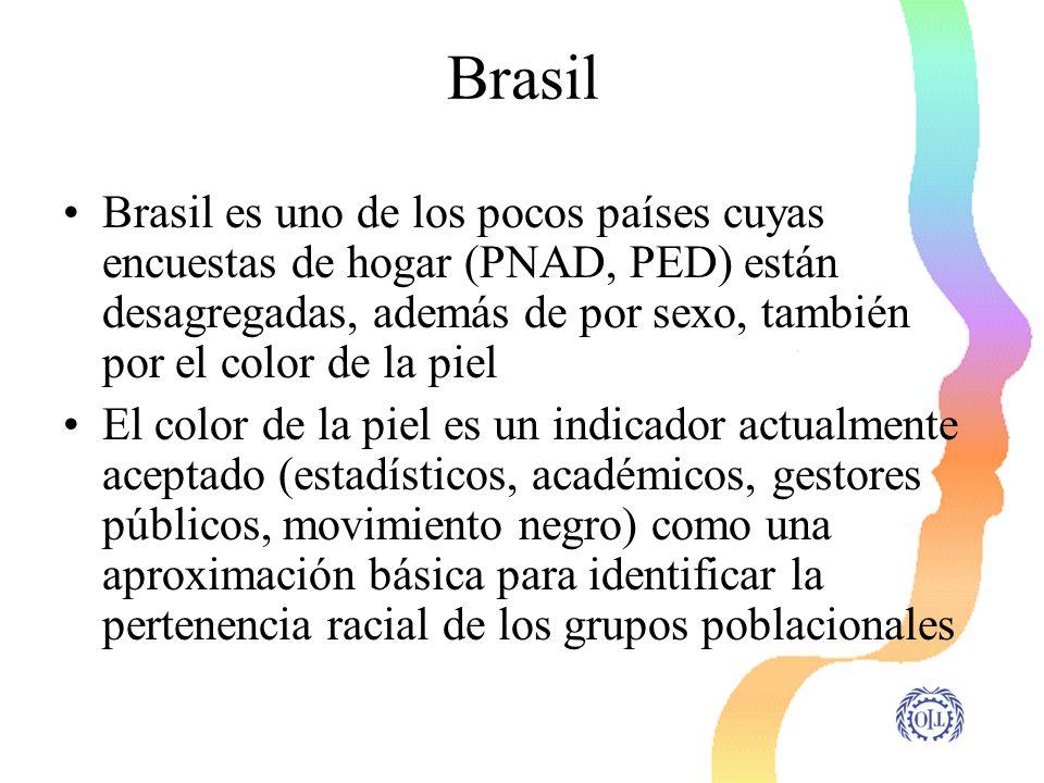 Brasil Brasil es uno de los pocos países cuyas encuestas de hogar (PNAD, PED) están desagregadas, además de por sexo, también por el color de la piel.