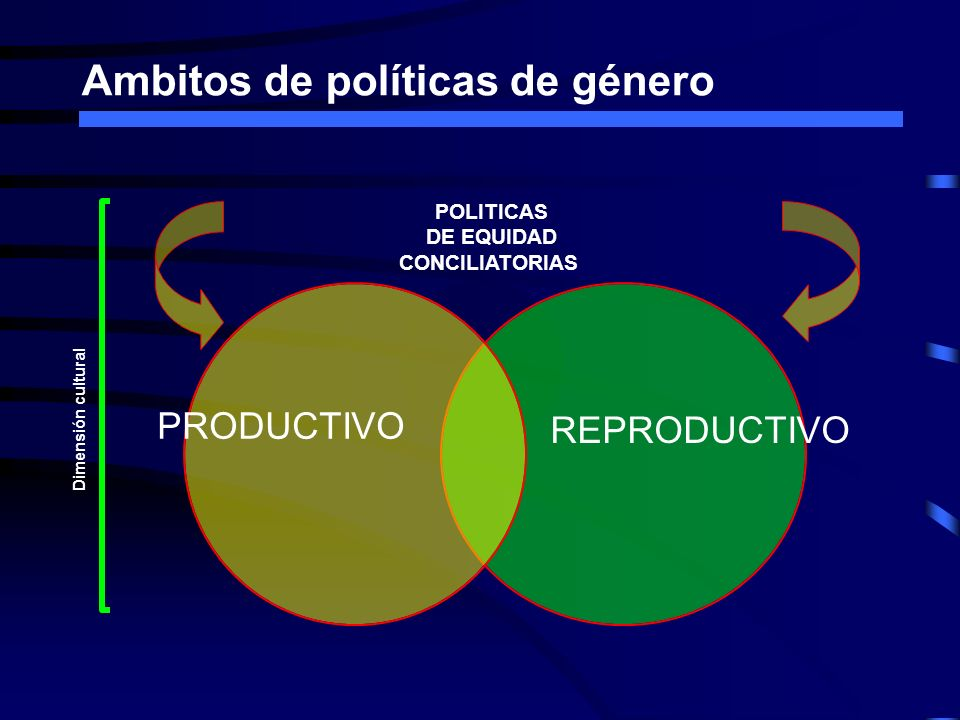 Ambitos de políticas de género