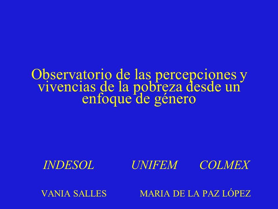 INDESOL UNIFEM COLMEX VANIA SALLES MARIA DE LA PAZ LÓPEZ