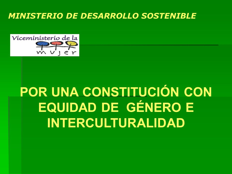 POR UNA CONSTITUCIÓN CON EQUIDAD DE GÉNERO E INTERCULTURALIDAD