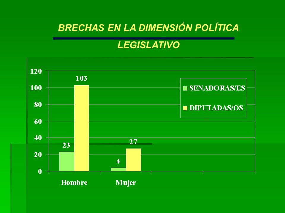 BRECHAS EN LA DIMENSIÓN POLÍTICA