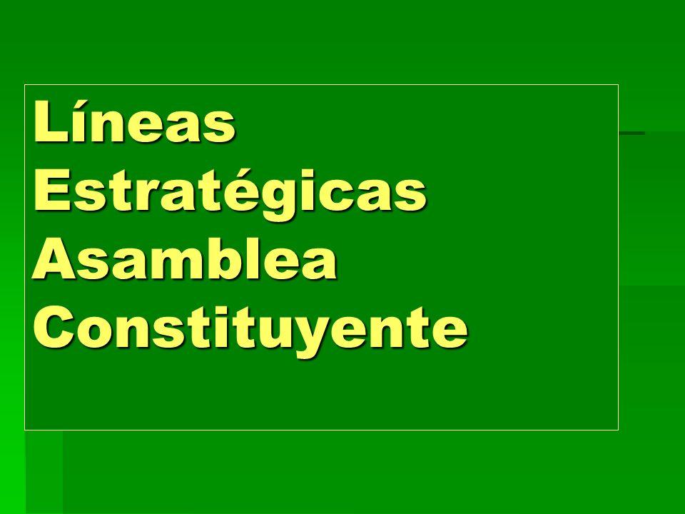 Líneas Estratégicas Asamblea Constituyente