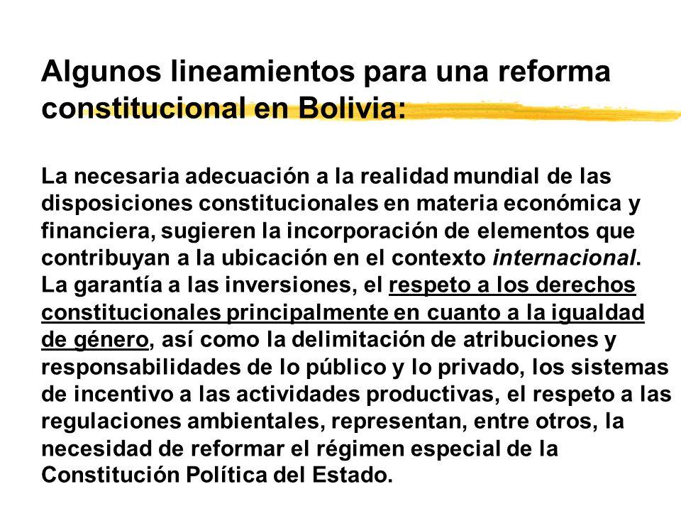 Algunos lineamientos para una reforma constitucional en Bolivia: La necesaria adecuación a la realidad mundial de las disposiciones constitucionales en materia económica y financiera, sugieren la incorporación de elementos que contribuyan a la ubicación en el contexto internacional.