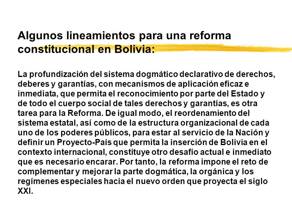Algunos lineamientos para una reforma constitucional en Bolivia: La profundización del sistema dogmático declarativo de derechos, deberes y garantías, con mecanismos de aplicación eficaz e inmediata, que permita el reconocimiento por parte del Estado y de todo el cuerpo social de tales derechos y garantías, es otra tarea para la Reforma.