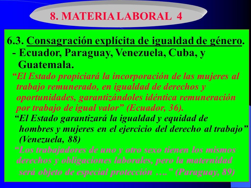 6.3. Consagración explícita de igualdad de género.