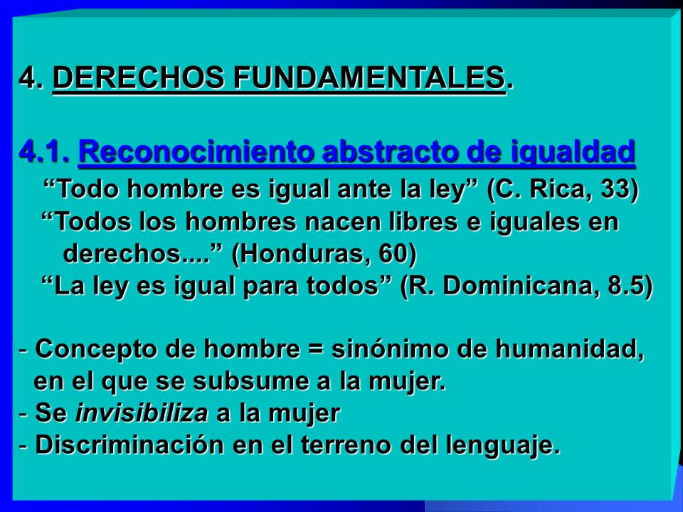 4. DERECHOS FUNDAMENTALES. 4. 1