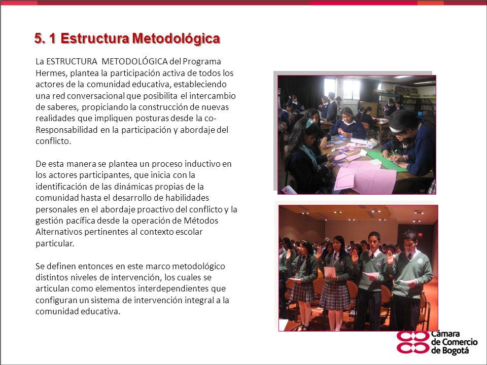 5. 1 Estructura Metodológica