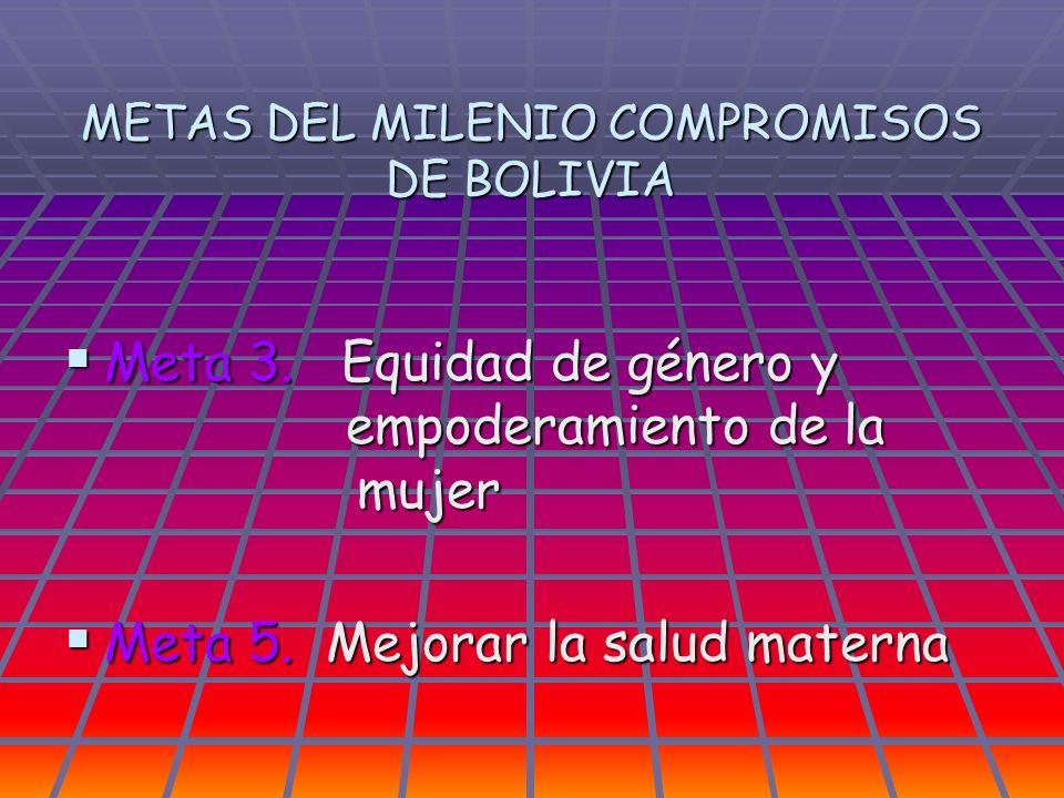 METAS DEL MILENIO COMPROMISOS DE BOLIVIA