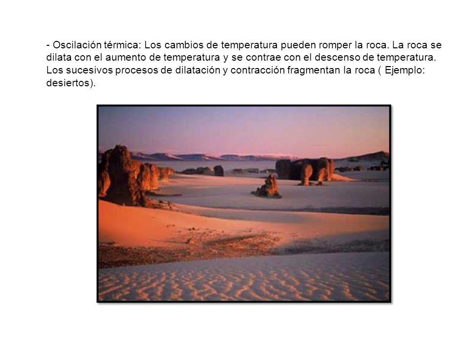 Ambiente sedimentario procesos petrogen ticos ppt for Roca termica
