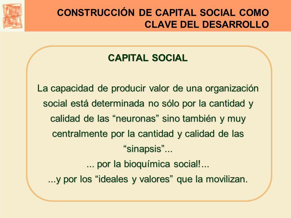 CONSTRUCCIÓN DE CAPITAL SOCIAL COMO CLAVE DEL DESARROLLO