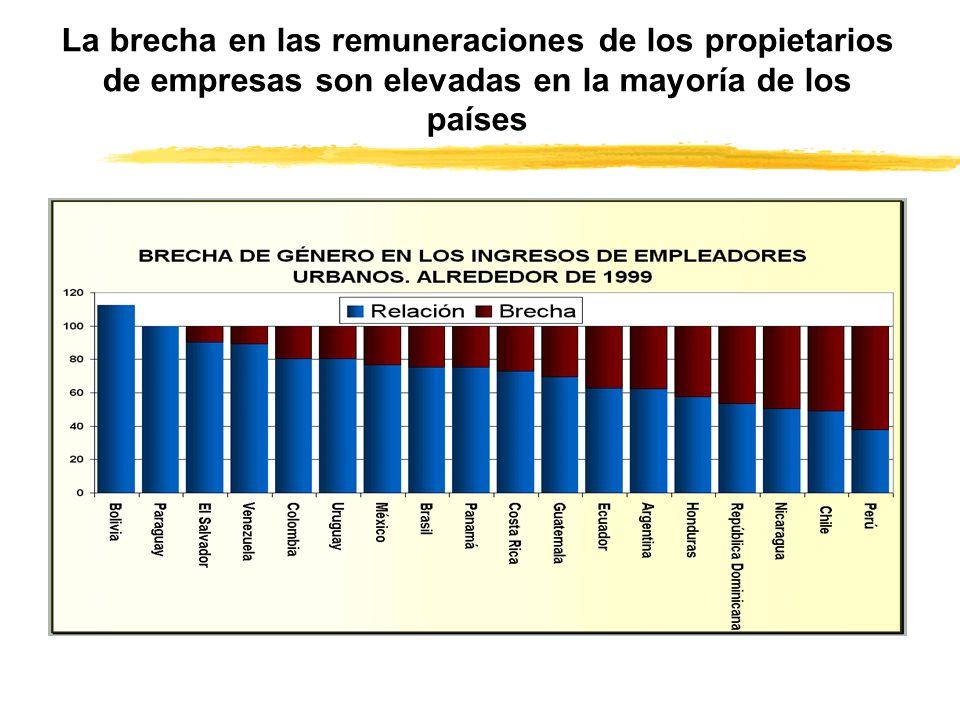 La brecha en las remuneraciones de los propietarios de empresas son elevadas en la mayoría de los países