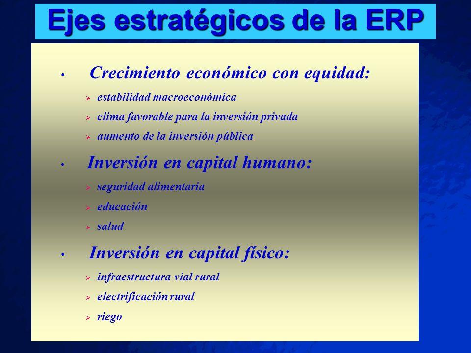 Ejes estratégicos de la ERP