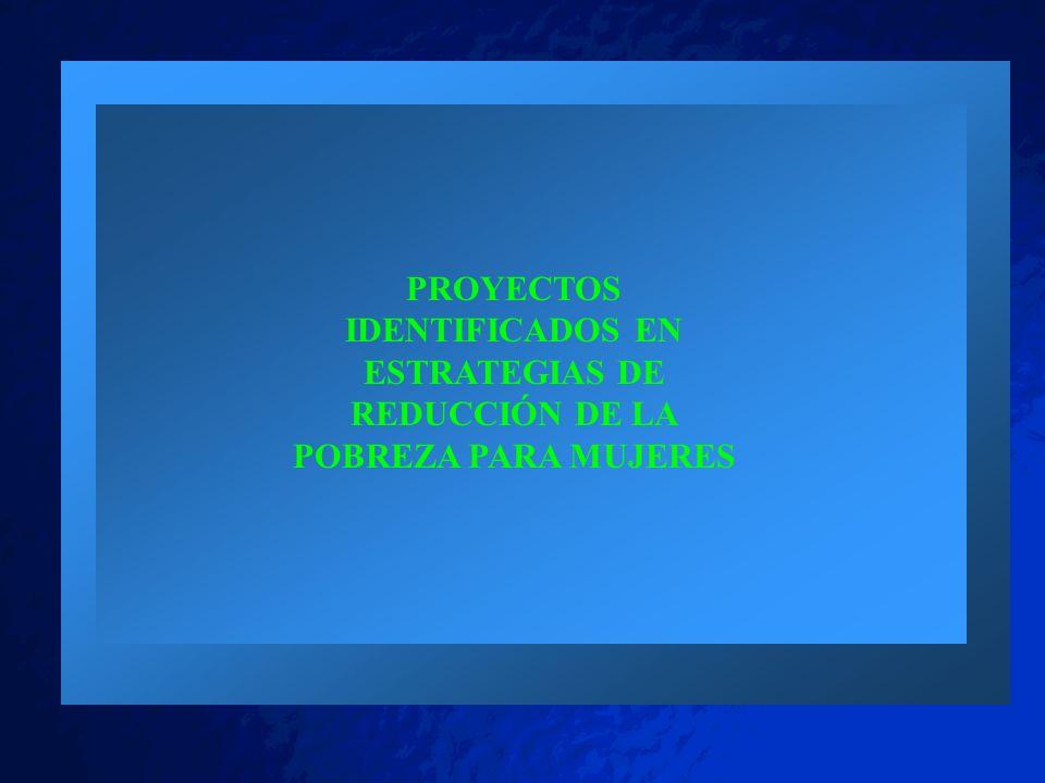 PROYECTOS IDENTIFICADOS EN ESTRATEGIAS DE REDUCCIÓN DE LA POBREZA PARA MUJERES