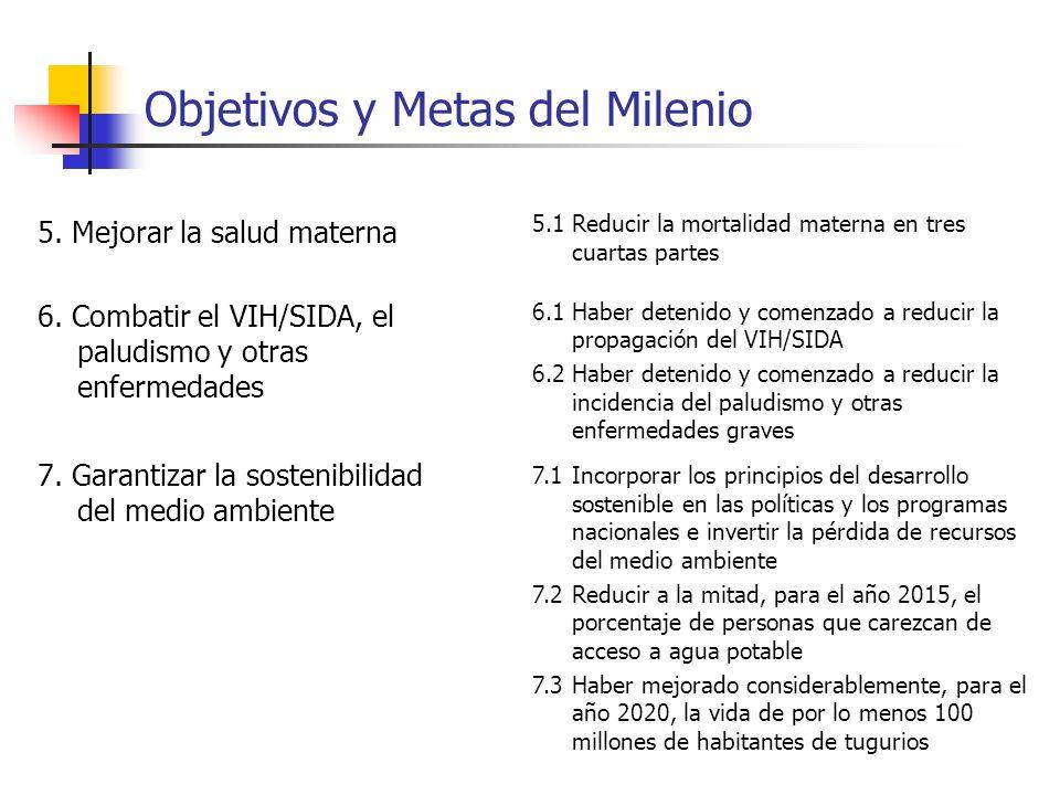 Objetivos y Metas del Milenio