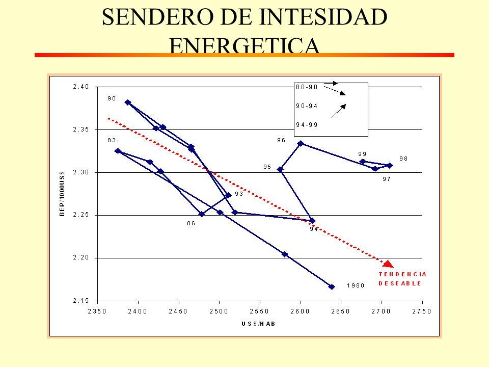 SENDERO DE INTESIDAD ENERGETICA