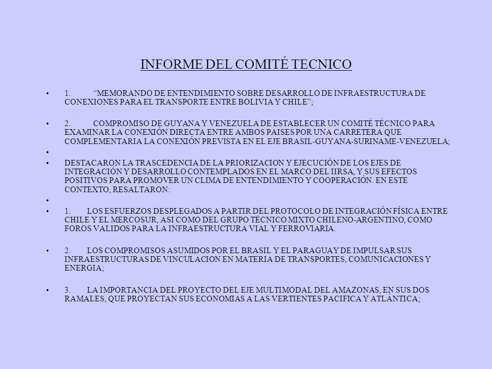 INFORME DEL COMITÉ TECNICO