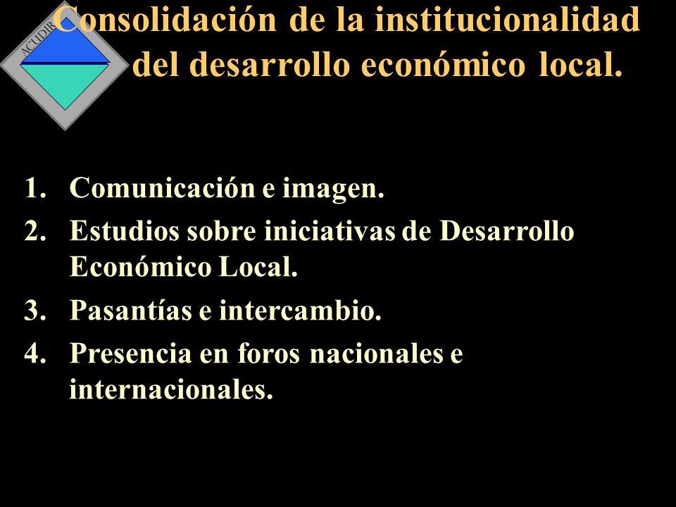 Consolidación de la institucionalidad del desarrollo económico local.