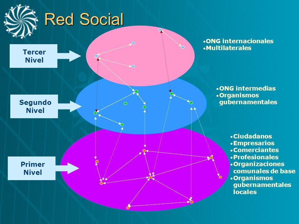 Red Social Tercer Nivel Segundo Nivel Primer Nivel ONG internacionales