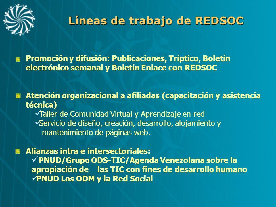 Líneas de trabajo de REDSOC