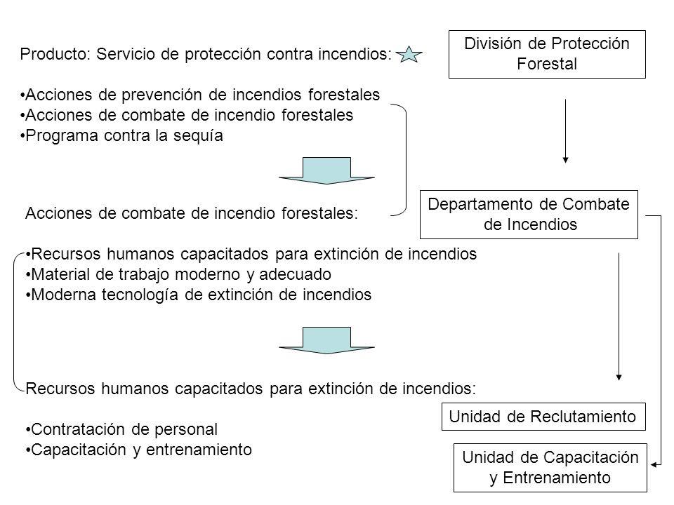 División de Protección Forestal