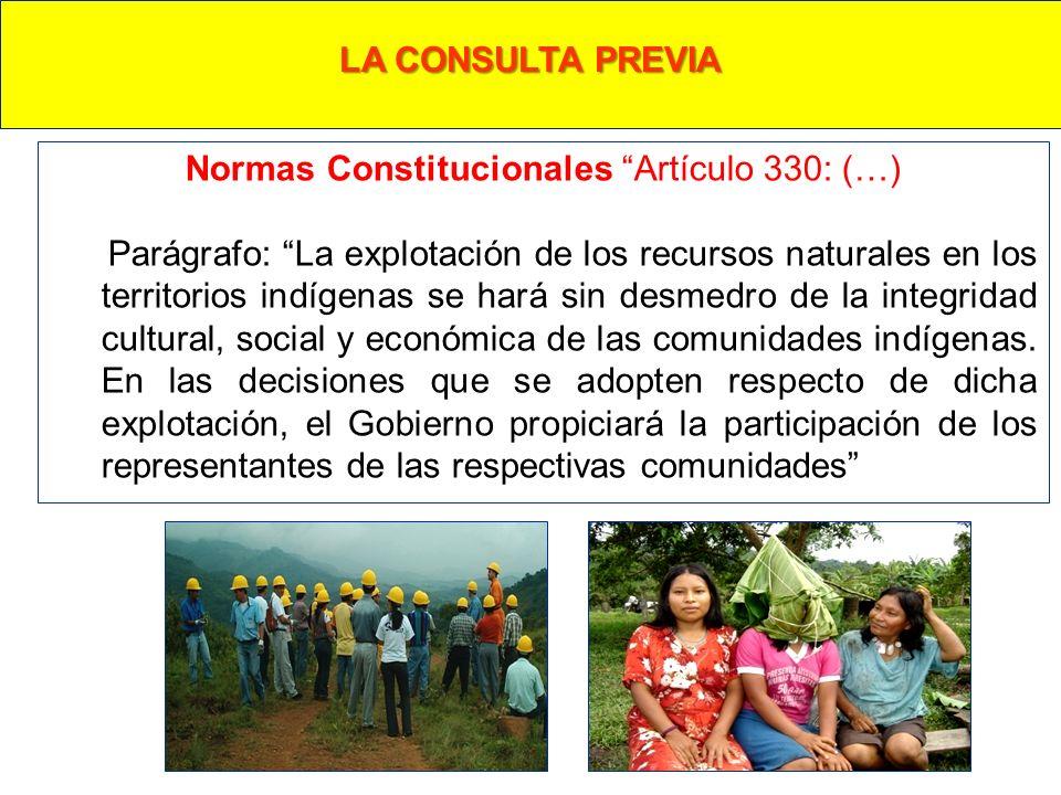 Normas Constitucionales Artículo 330: (…)