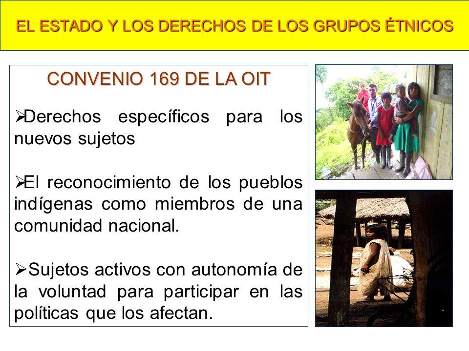 EL ESTADO Y LOS DERECHOS DE LOS GRUPOS ÉTNICOS