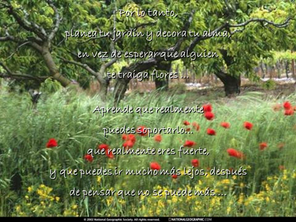 planea tu jardín y decora tu alma, en vez de esperar que alguien