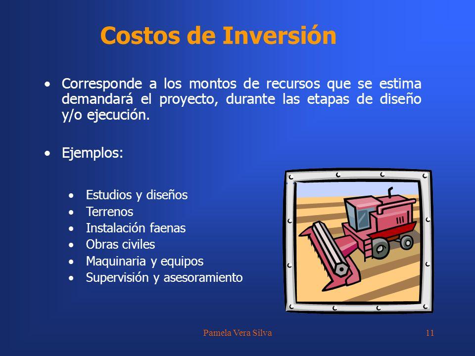 Costos de Inversión Corresponde a los montos de recursos que se estima demandará el proyecto, durante las etapas de diseño y/o ejecución.