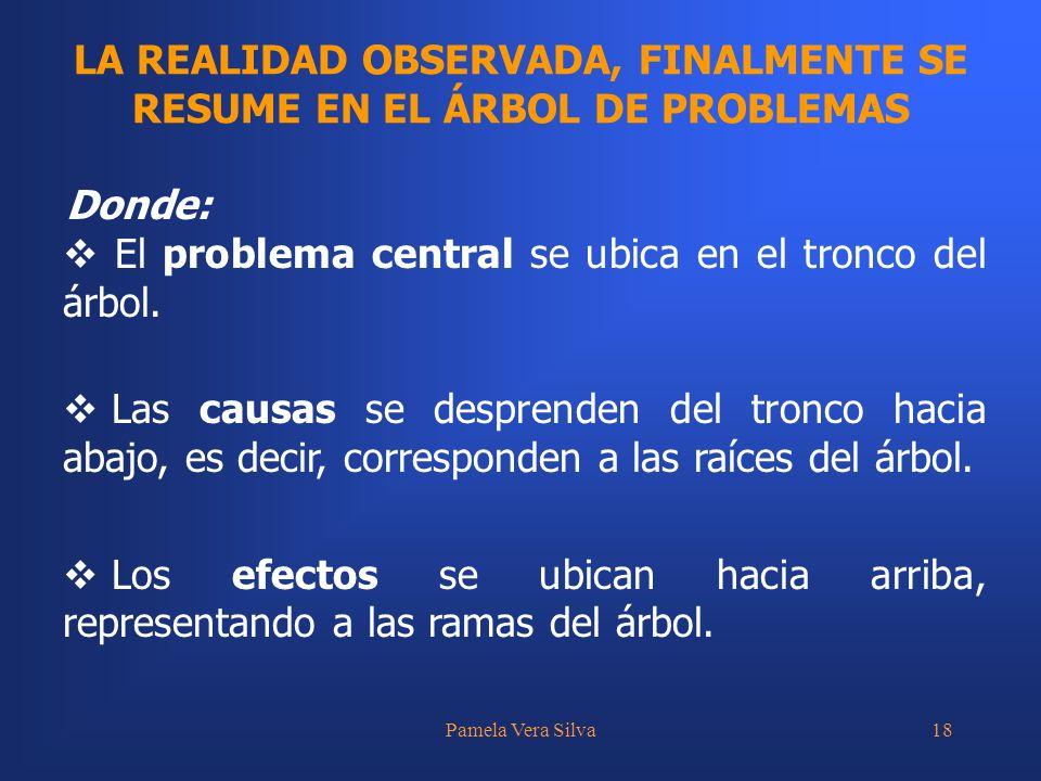 LA REALIDAD OBSERVADA, FINALMENTE SE RESUME EN EL ÁRBOL DE PROBLEMAS