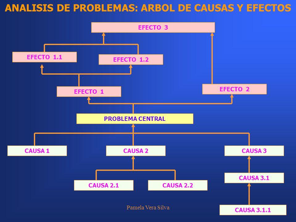ANALISIS DE PROBLEMAS: ARBOL DE CAUSAS Y EFECTOS